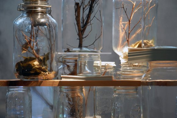 naoko ito instalação arte natureza urbana jarras de vidro potes galhos árvores
