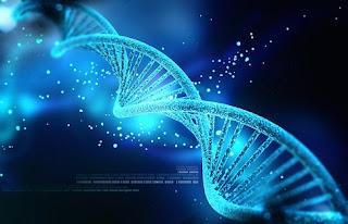 Lufta mbi ADN-në e Njeriut