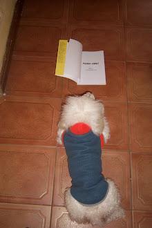 A leer todo el mundo, ni Luli se salva
