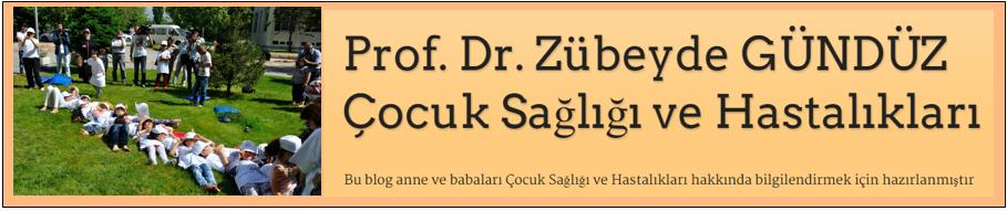 Prof. Dr. Zübeyde GÜNDÜZ  Çocuk Sağlığı ve Hastalıkları