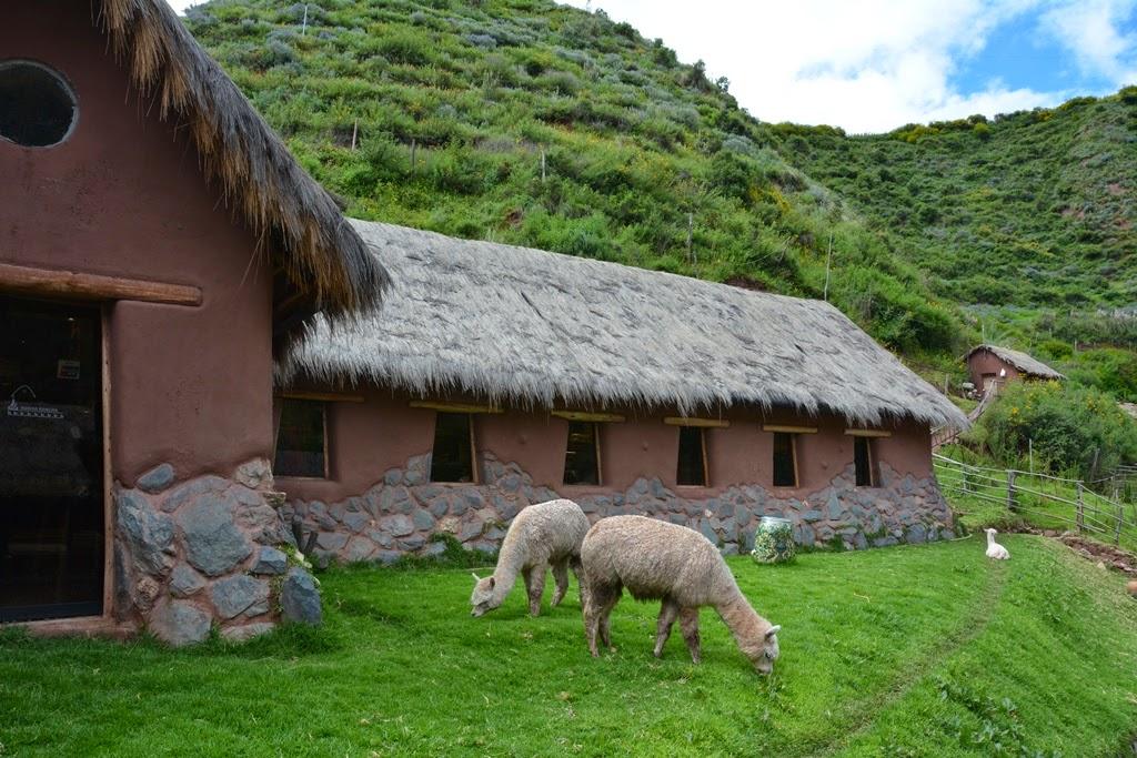 Awana Kancha Sacred Valley