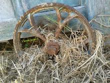 Enredada rueda