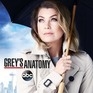 Greys Anatomy - A Anatomia de Grey 12ª Temporada Completa Séries Torrent Download capa