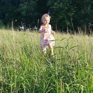 Nourishing My Scholar: Farm Life post