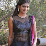 Telugu Actress Twinkle  Latest Hot Stills (23)