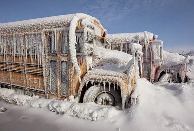 صور سيارات أكثر من 20 سيارة في الشتاء تحولت إلى عمل فني