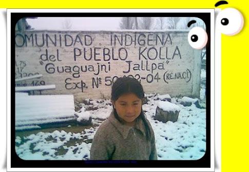 """NIEVE EN LA COMUNIDAD INDÌGENA DEL PUEBLO KOLLA """"Guaguajni  Jallpa """""""