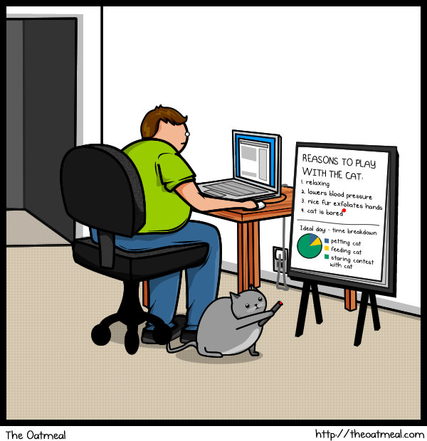 cat vs internet, the oatmeal