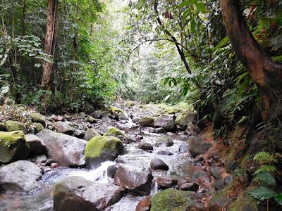 Rivière menant à la cascade de la Parabole