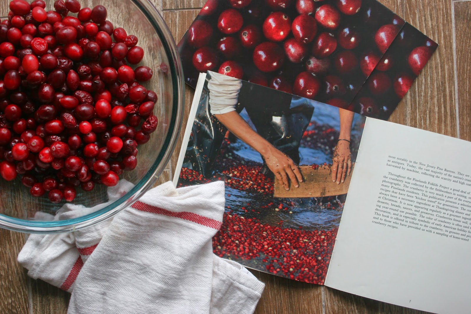 Cranberries and the American Folklife Center's Cookbook