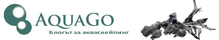 AquaGo блог - блогът за акваскейпинг и растителни аквариуми