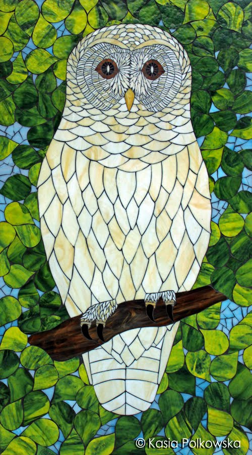 White Barred Owl