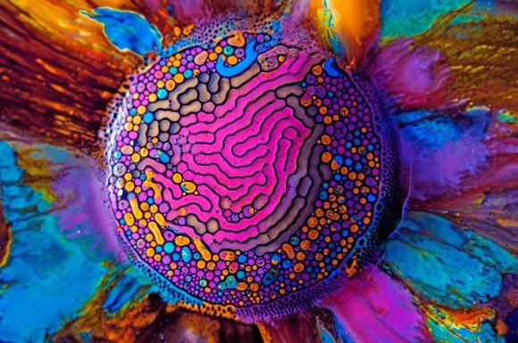 Fabian Oefner fotografia alta velocidade cores vibrantes ciência ferrofluido magnetismo