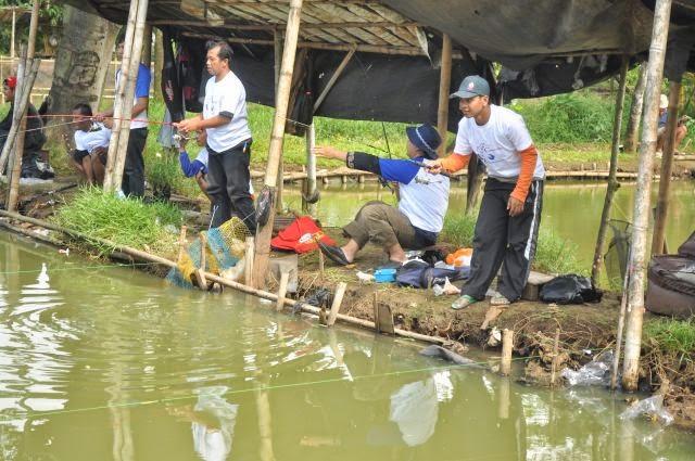 5 Racikan Umpan Ikan Mas Galatama Para Juara Terbaru 2017