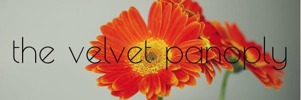The Velvet Panoply