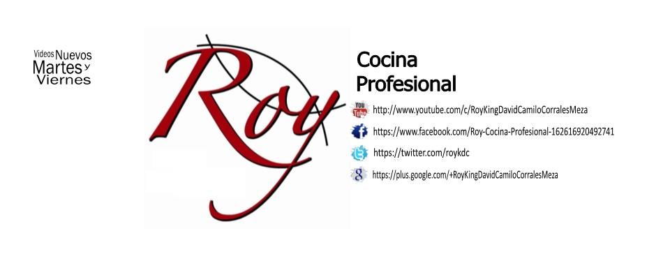 Roy Cocina Profesional
