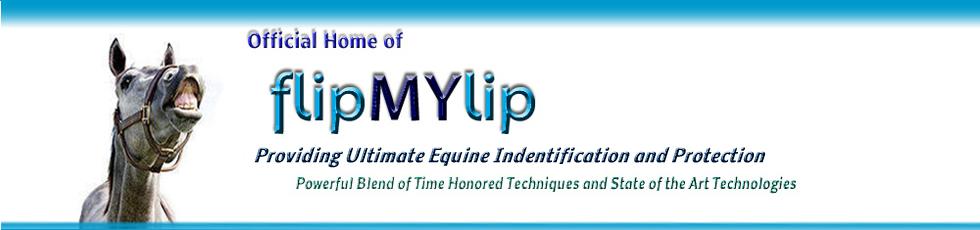 flipMYlip