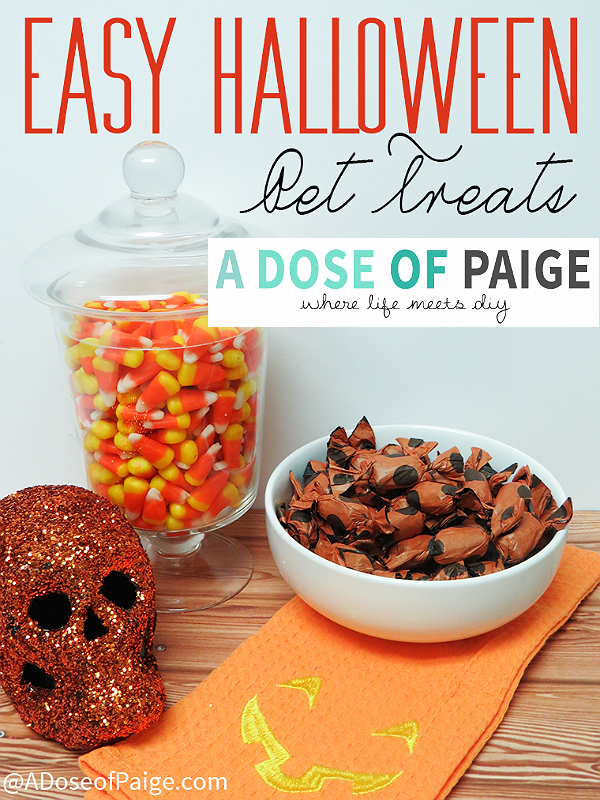 A Daily Dose of Paige shares how to Trick Or Treat Em with tissue wrapped dog treats! #shop http://www.adoseofpaige.com/tag/halloween-pet-treats/