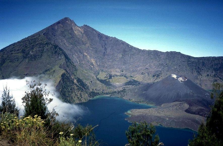 Gunung rinjani gunung krakatau ngarai sianok tumbuhan di dataran