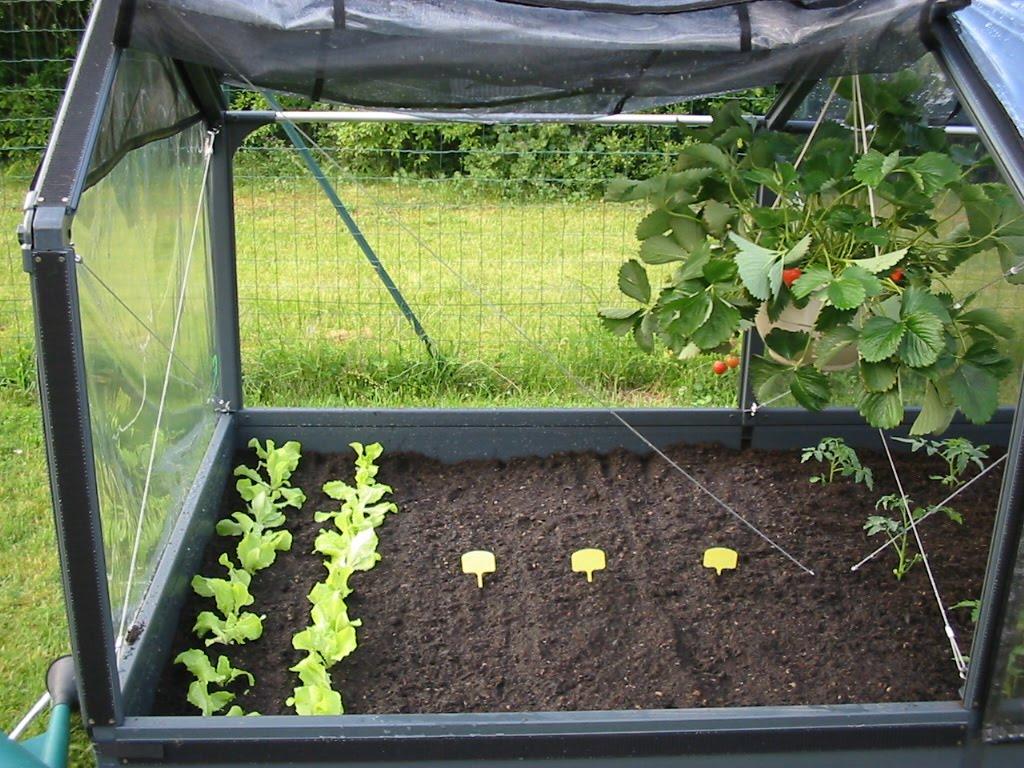 la belle jardiniere mon jardin potager id al. Black Bedroom Furniture Sets. Home Design Ideas
