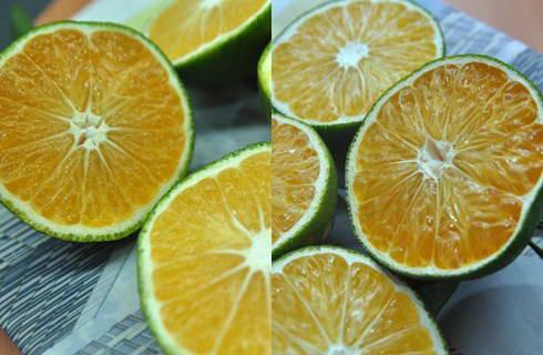 Cách nhận biết cam Trung Quốc