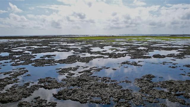 recife de corais e piscinas naturais