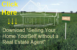 "Download ""Selling Your Home Alone without a Real Estate agent"""