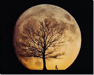 Fakta Unik, Terselubung, & Menakjubkan Dari Bulan - [www.zootodays.blogspot.com]