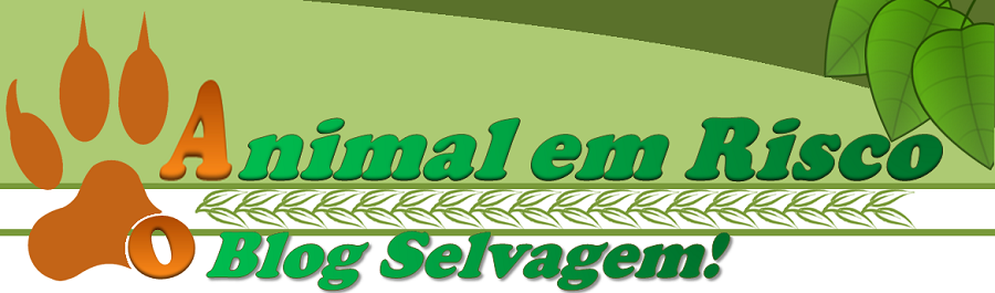 Animal em Risco - O Blog Selvagem!