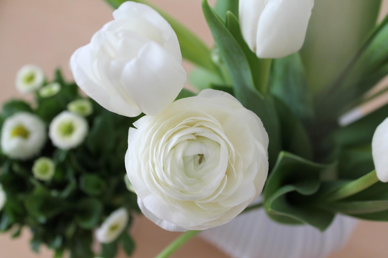 Ranunkeln und Tulpen weiss