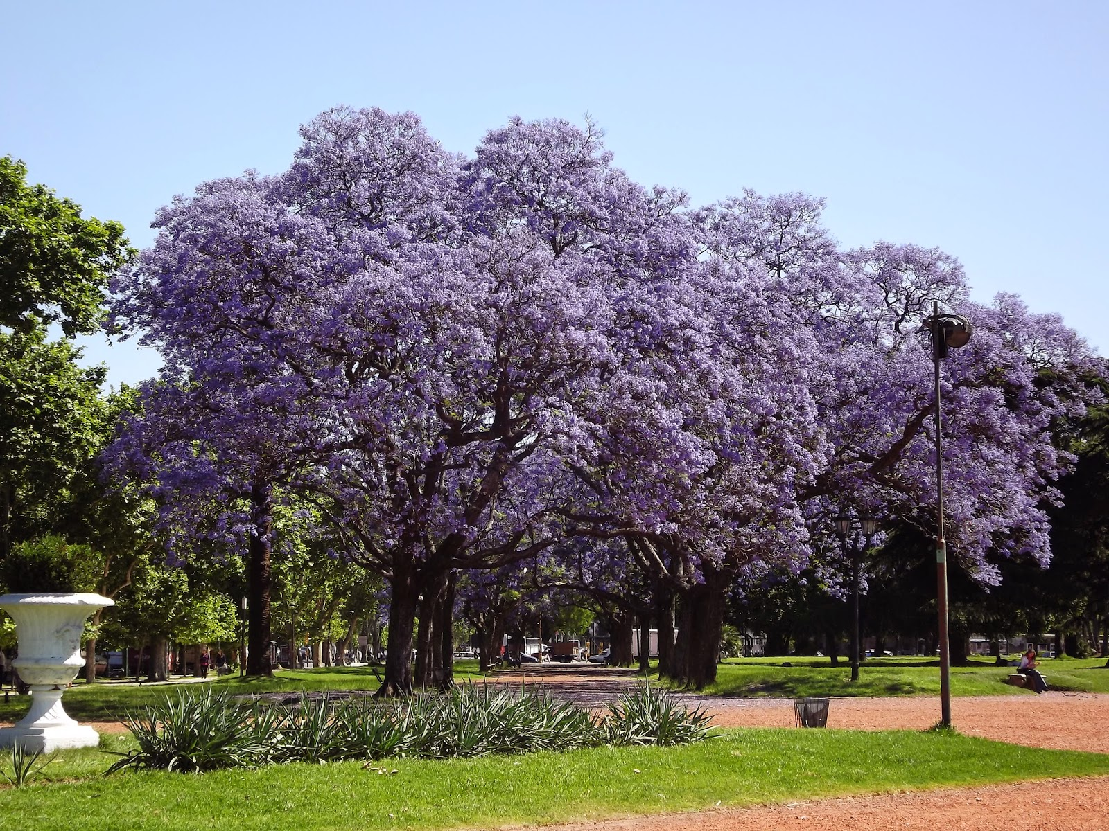 http://cadalugarumadica.blogspot.com.br/2014/09/buenos-aires-argentina-palermo.html