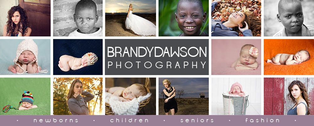 Brandy Dawson Photography - Indianapolis newborn, child &amp; senior photographer