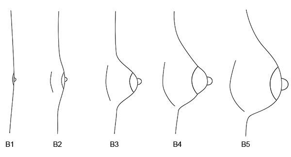 Wir wählen den Badeanzug auf die kleine Brust aus