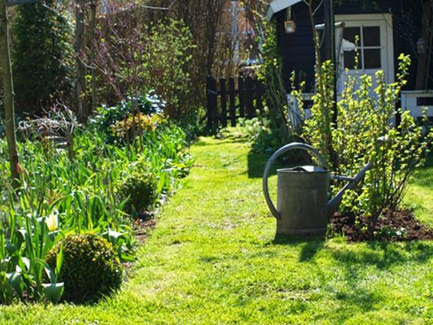 Zinkvandkanden bliver nu flittigt brugt, så alt kan gro og vokse