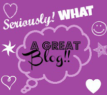 The Seriously, What A Great Blog Award!