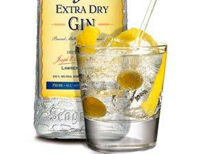 ¿Cómo se prepara un gin-tonic sucio?