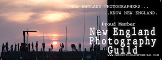 New England Photography Guild Link