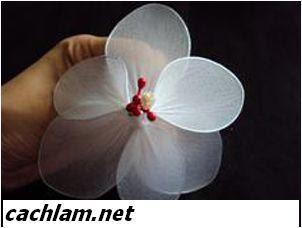 Cách làm hoa tulip vải voan | Biết đủ thứ | TayDo.