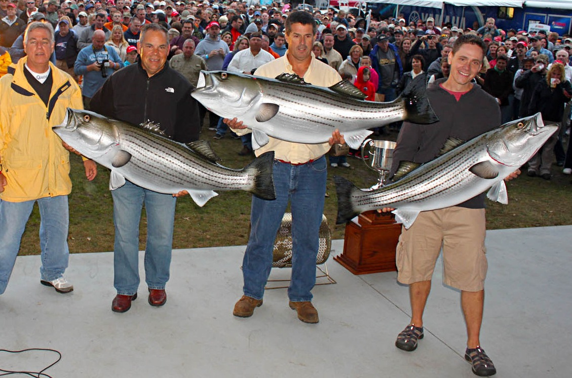 Ri man takes striper cup with 58 8 lbs bass college for Lifetime fishing license ny