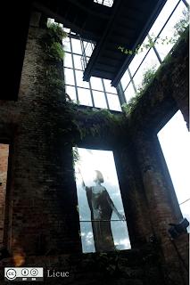 vista interior de parque das ruínas