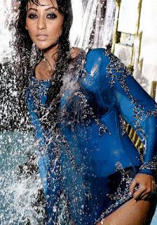 Vedita Pratap Singh Sexy Still