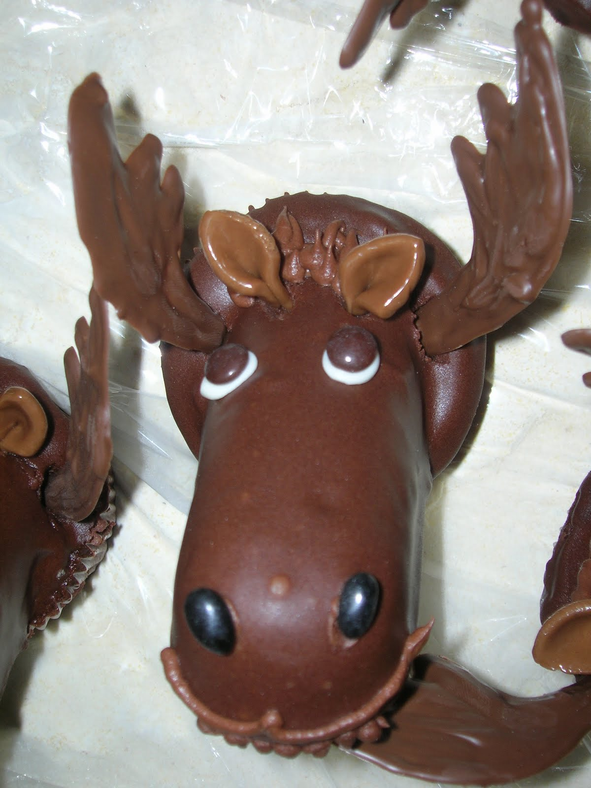 Married With UFOs: Chocolate Moose