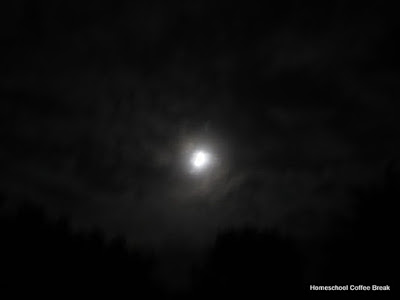 (Not) Wordless Wednesday - The Moon on Homeschool Coffee Break @ kympossibleblog.blogspot.com