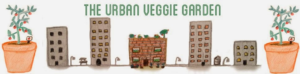 The Urban Veggie Garden