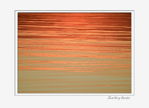 Sunset on the Water; copyright Shelley Banks; all rights reserved.