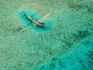 Submerged Plane, Bahamas