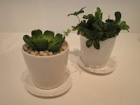 ミニグリーン エコストーン 造花