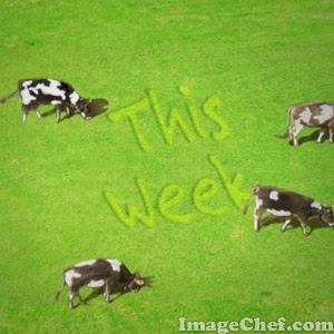 cow pasture image courtesy of imagechef.com