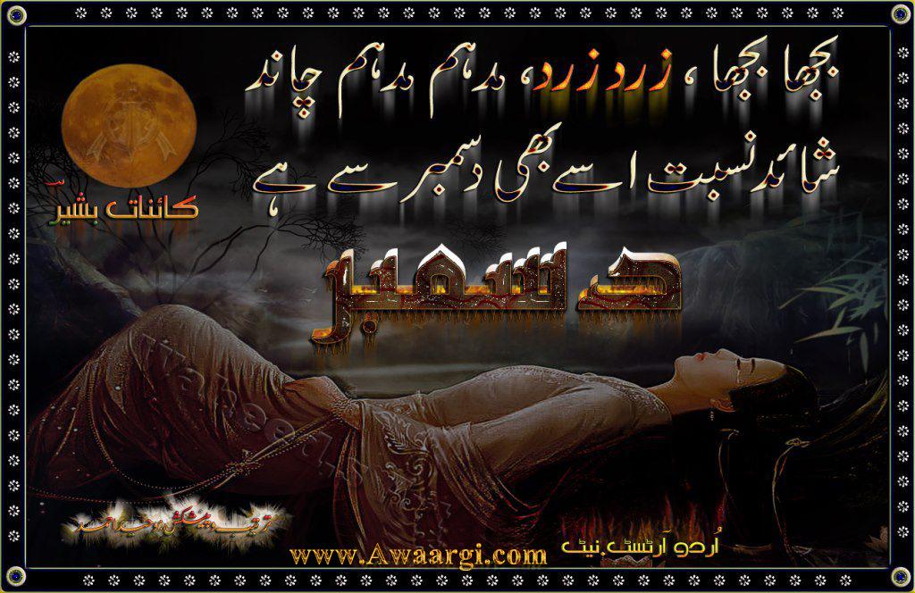 Bewafa Shayari | Best Shayari in Hindi urdu love funny sa