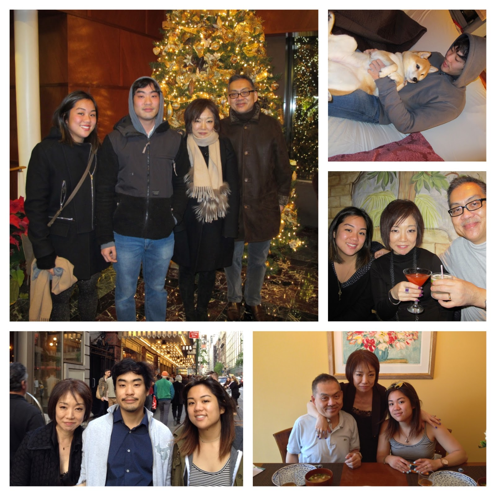 Siu Family Holiday Greetings